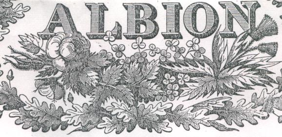 Part of The Albion masthead